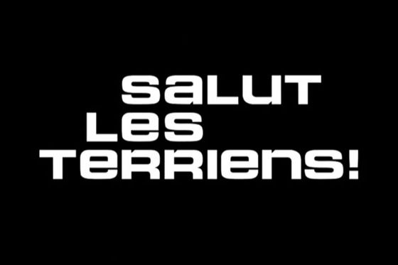 560px-LogoSalutlesterriens